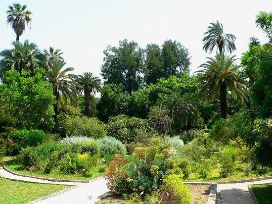 Hotel Residenza San Calisto: Rome botanic garden in trastevere