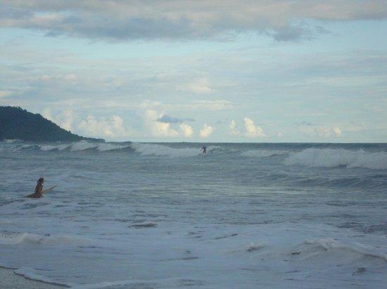 Hotel Raratonga:                   Surf
