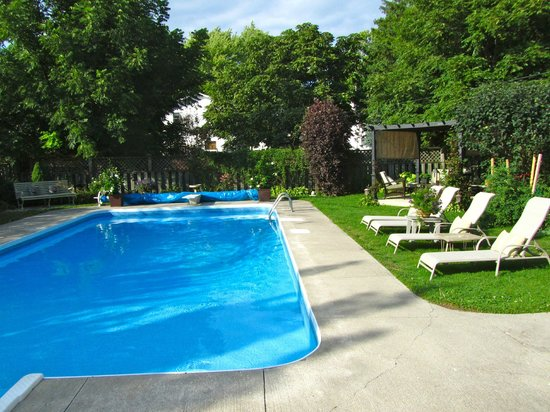 Traditions Guest House:                   Beautiful backyard patio and pool