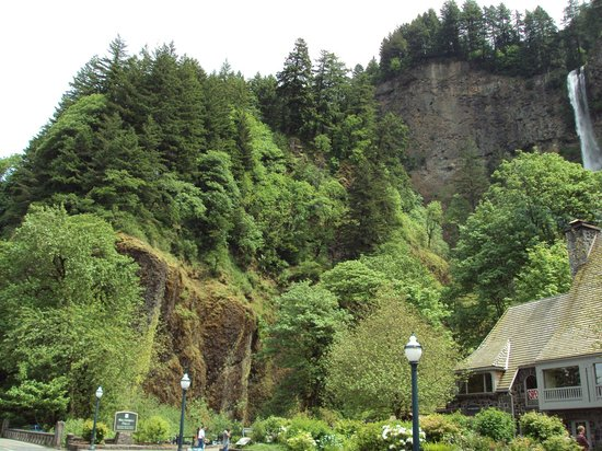 Multnomah Falls:                   Looking up from the parking lot