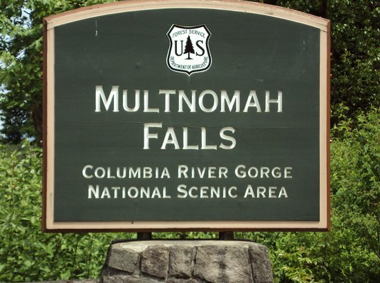 Multnomah Falls:                   Don't pass up the chance to see this!