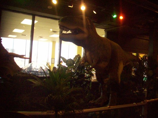 Adventure Science Center:                                     T-rex in the dinosaur exhibit