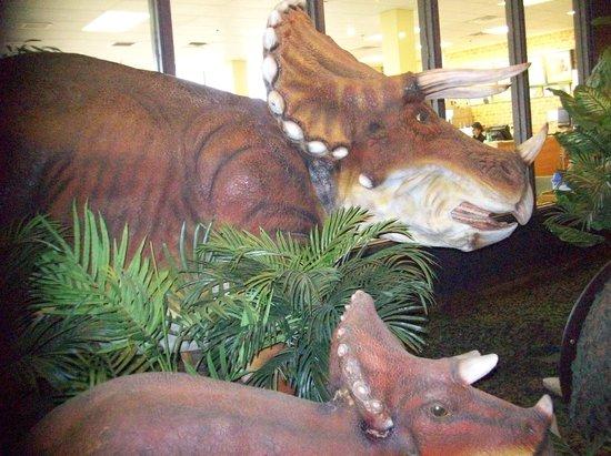 Adventure Science Center:                                     Dinosaur Exhibit