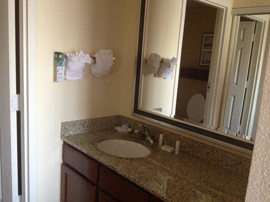 Residence Inn Tampa North/I-75 Fletcher :                                     Bathroom sink