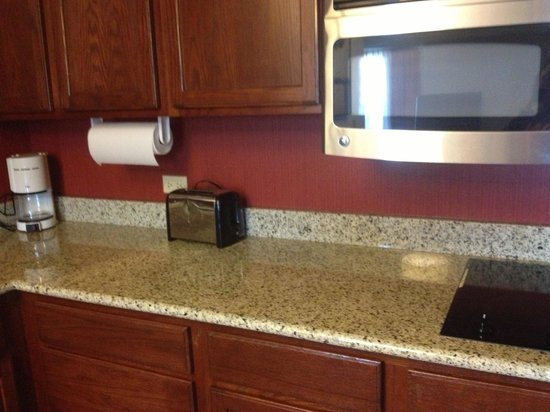 Residence Inn Tampa North/I-75 Fletcher:                                     Kitchen counter