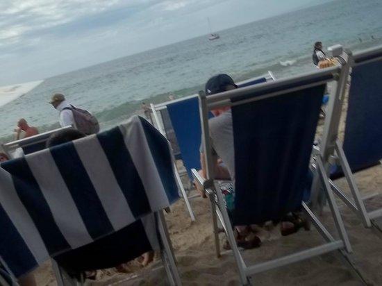 بلو تشيرز ريزورت باي ذا سي:                   The ocean feet away!                 