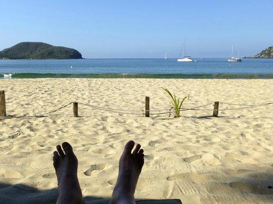 كاتالينا بيتش ريزورت:                   Relaxing on the beach                 