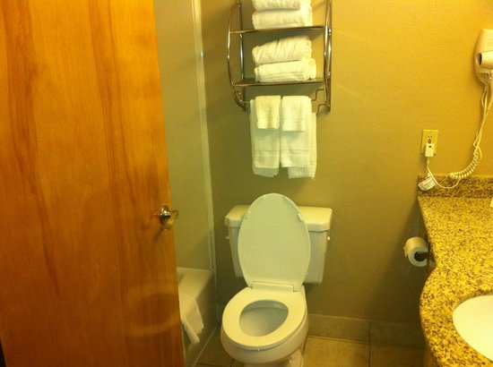 Comfort Suites Las Colinas Center:                   Bathroom