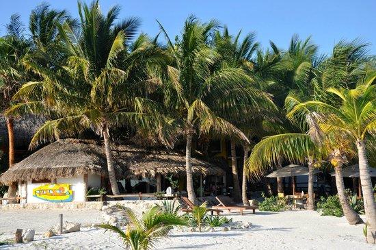 Barquito Mawimbi Beach Bar & Restaurant : BARQUITO de Mawimbi