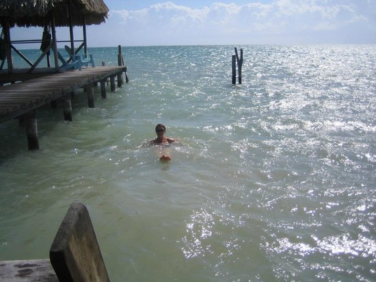 Colinda Cabanas:                                     Taking a swim right off the pier...so fantastic!