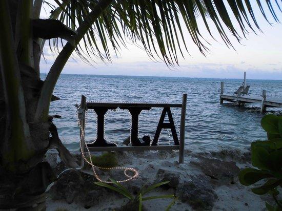 Aji Tapa Bar & Restaurant:                   Aji, con vistas al mar!!!