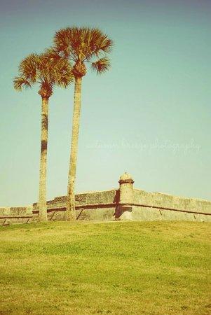 Castillo de San Marcos:                                     .