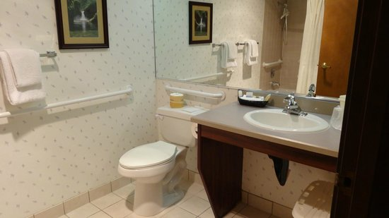 Best Western Pony Soldier Inn - Airport:                   ADA-accessible bath