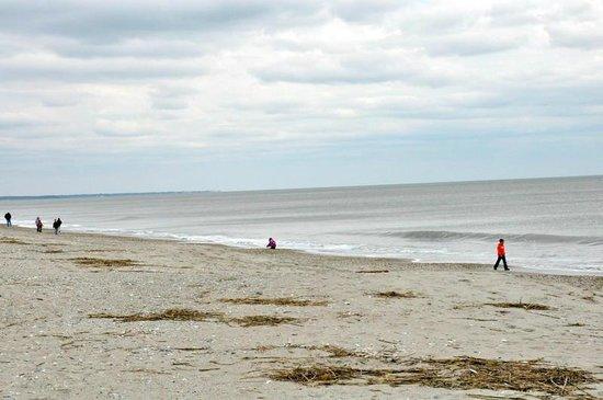 Edisto Beach State Park The In Winter Empty Almost