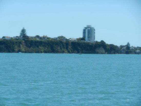 Auckland Waterfront Serviced Apartments:                   Across the water