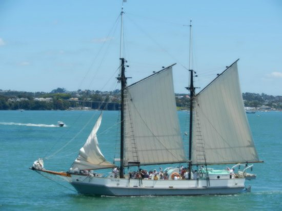 Auckland Waterfront Serviced Apartments:                   Watching the sailboats go by