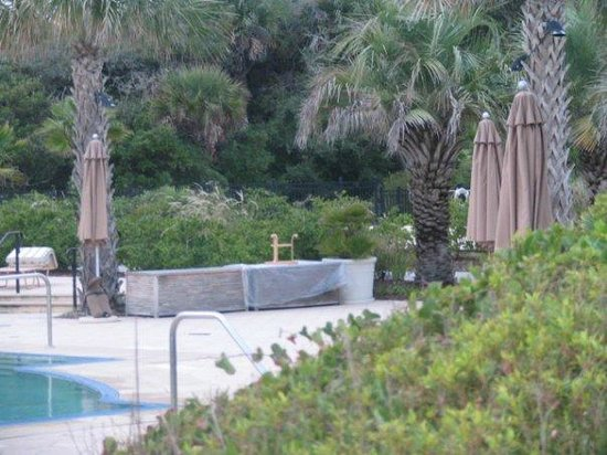 Kiawah Island Golf Resort:                   View of one of the pool area