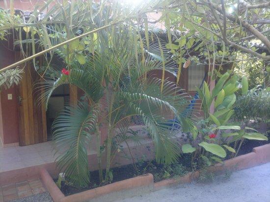 Condominio Dos Nativos:                                     Tranquilidad total!
