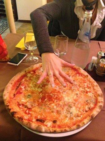 Pizzeria Trattoria all'Anfora :                   Big!