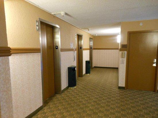 Comfort Inn & Suites: elevator area