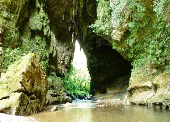 Atabey Eco Adventures Utuado Puerto Rico Top Tips