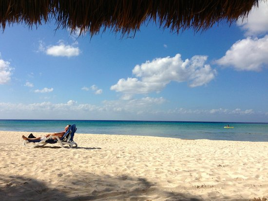 Melia Cozumel Golf - All Inclusive :                                     Under the thatched hut