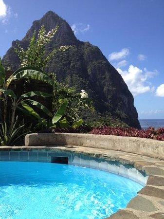 Stonefield Estate Resort :                   Casaurina