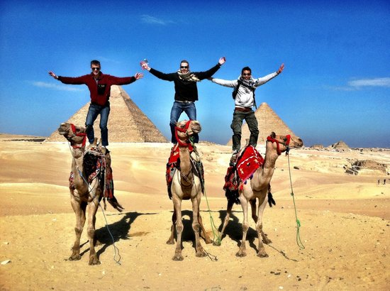 Pyramids of Giza:                   Camel surfing