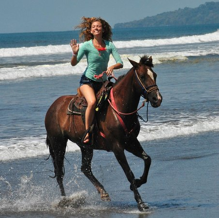 The Riding Adventure: freedom !