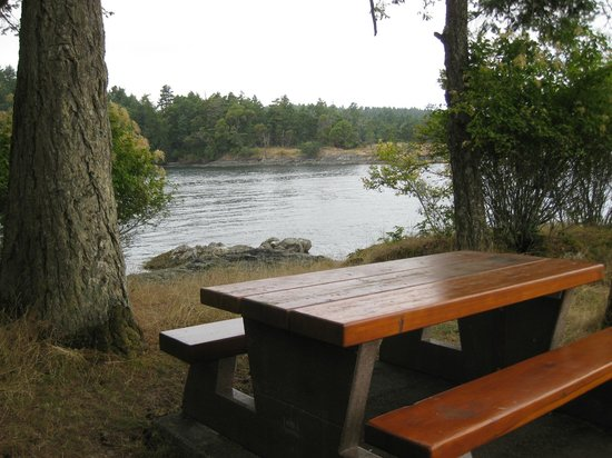 Ruckle Provincial Park: Picnic table with an ocean view!