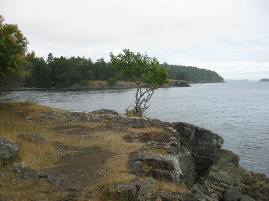 Ruckle Provincial Park:                                     Rocky outcrop by the sea along the trail.