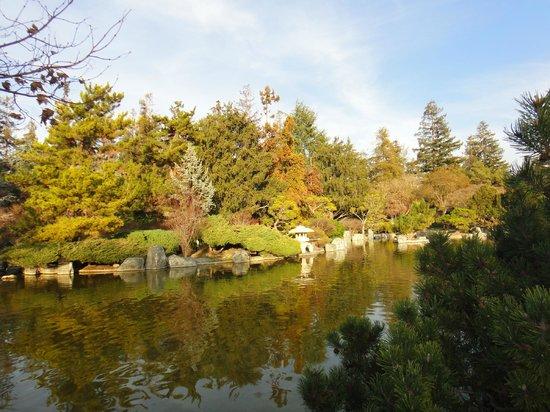 Japanese Friendship Garden:                   Водоем