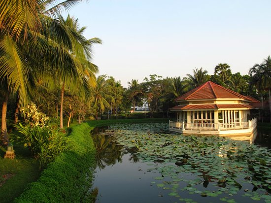 Sofitel Angkor Phokeethra Golf and Spa Resort:                   Pond in garden