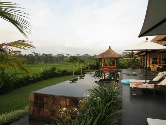 Bidadari Private Villas & Retreat - Ubud:                   プール