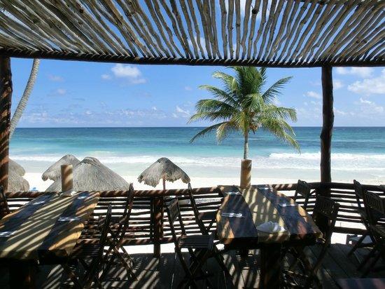 Hip Hotel Tulum: Aussicht vom Restaurant