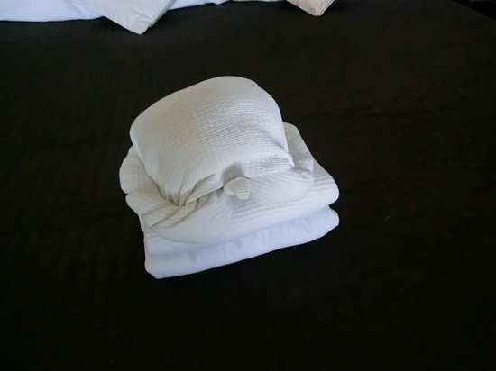 Hip Hotel Tulum: Housekeeping macht immer süße Tiere aus den Handtüchern