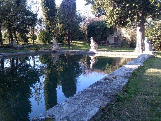 Chateau de Roussan:                   Le bassin
