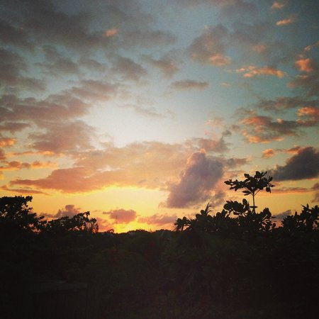 Le Reve Hotel & Spa:                                     Sunset over the jungle looking out from the back/entry of th