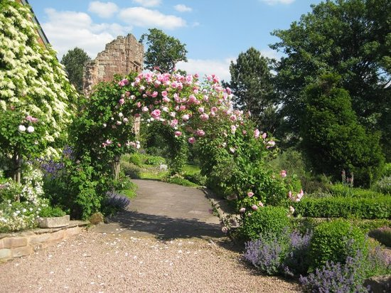 Wilton Castle:                                     Old Fashioned Rose Garden
