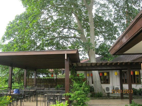 Hotel Tropika Davao :                                                       it is so relaxing to have trees around in