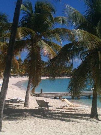 Club Med La Caravelle:                   la plage vue de la biguine                 