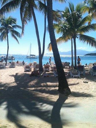 Club Med La Caravelle:                   la plage