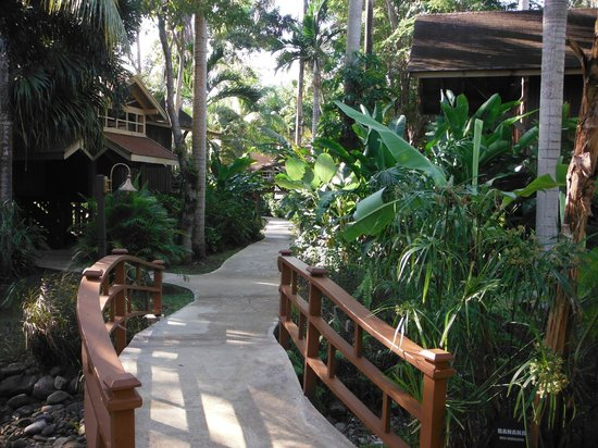 Sunset at the Palms: pathways to cabins