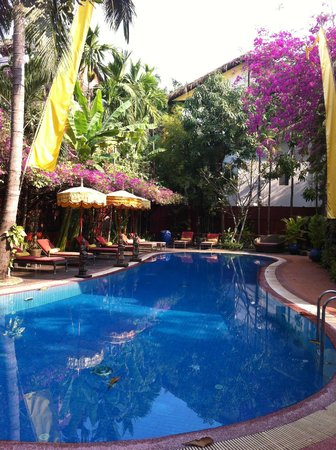 Bopha Angkor Hotel & Restaurant:                   pool
