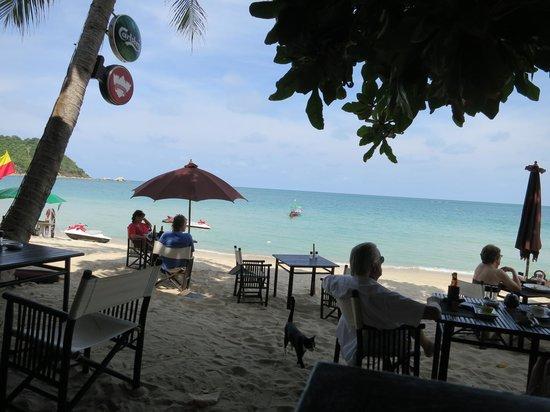 Buri Rasa Koh Phangan:                   Vue plage restaurant