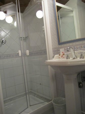 Hotel Camelia:                   Spacious shower