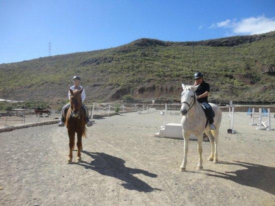 Horse Riding Adventures in Tenerife :                   M&L Horse riding