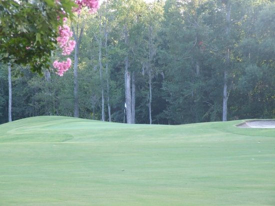 Sound Golf Links at Albemarle Plantation: Hole #5 green view