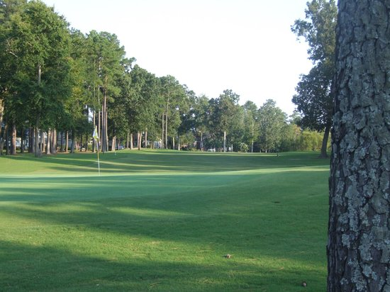 Sound Golf Links at Albemarle Plantation: Hole #1 from back of green to fairway
