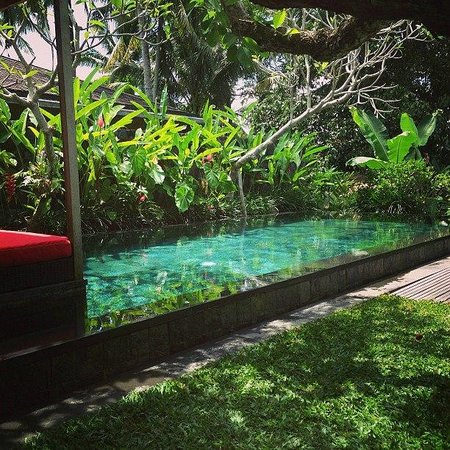Chapung SeBali Resort and Spa: Villa pool